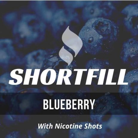 Blueberry Shortfill with Nicotine Shots