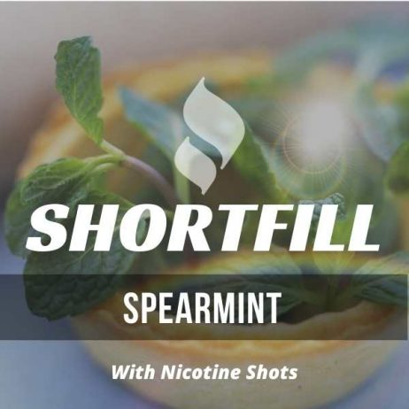 Spearmint Shortfill with Nicotine Shots